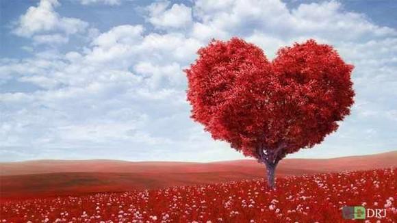روز ولنتاین و سپندارمذگان کدام ؟